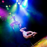 Pole rhythmic gymnastics